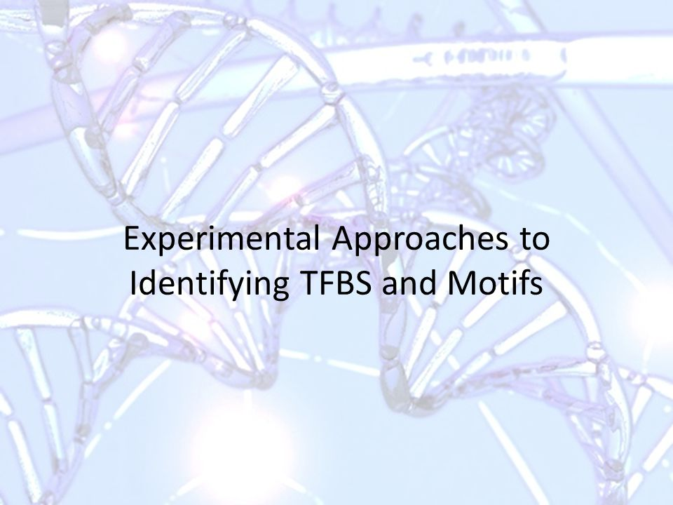 Experimental Approaches to Identifying TFBS and Motifs