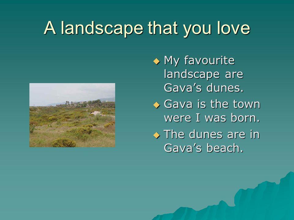 A landscape that you love  My favourite landscape are Gava's dunes.