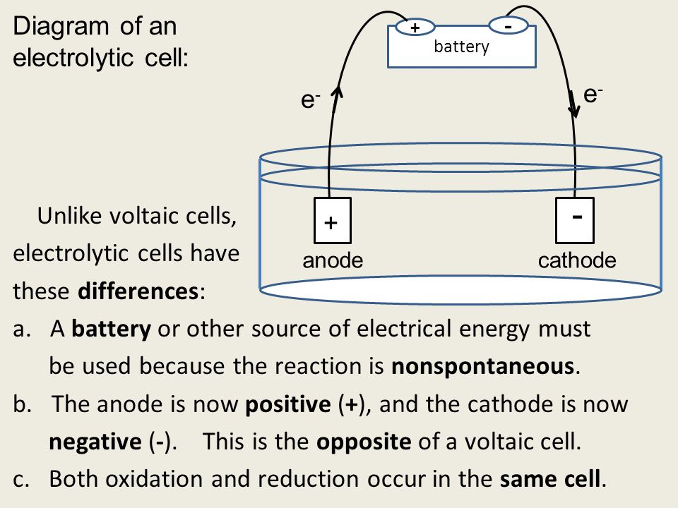 battery + - Unlike voltaic cells, electrolytic cells have these differences: a.