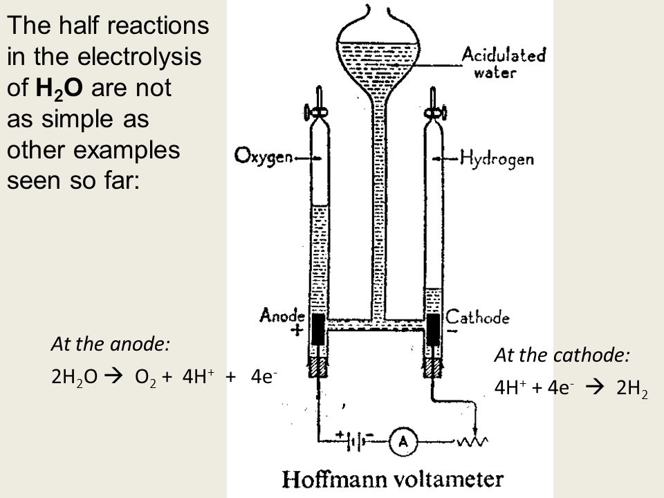 The half reactions in the electrolysis of H 2 O are not as simple as other examples seen so far: At the anode: 2H 2 O  O 2 + 4H + + 4e - At the cathode: 4H + + 4e -  2H 2