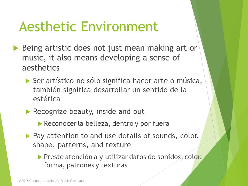 Aesthetic Environment  Being artistic does not just mean making art or music, it also means developing a sense of aesthetics  Ser artístico no sólo