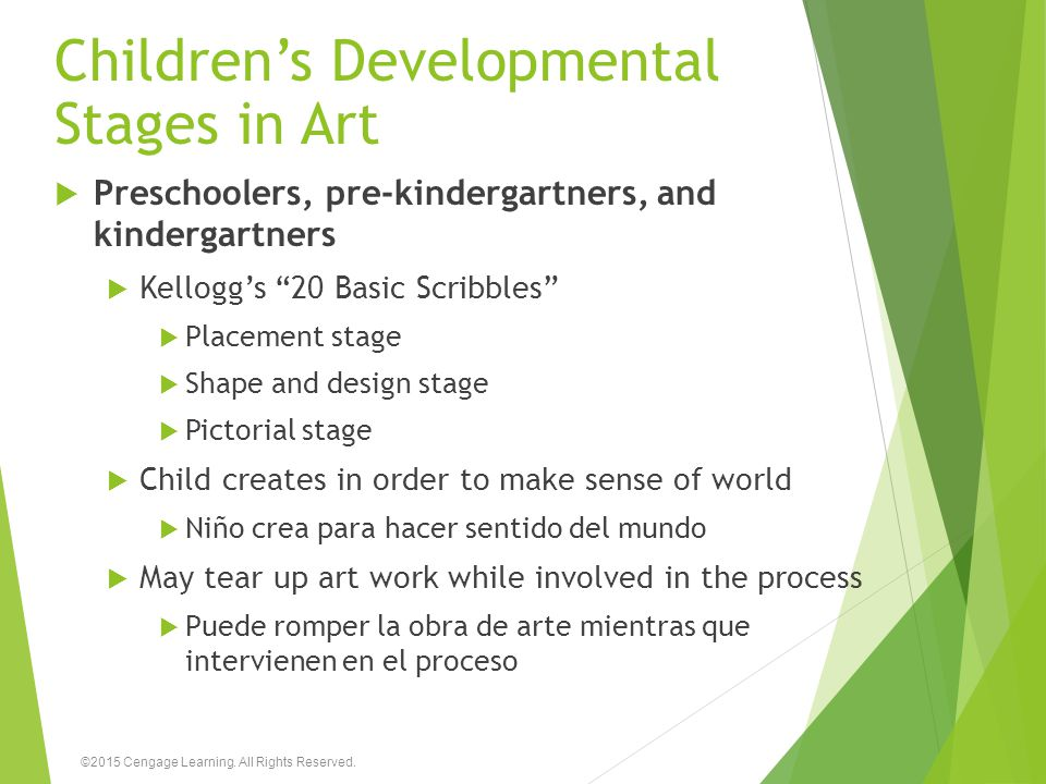 Children's Developmental Stages in Art  Preschoolers, pre-kindergartners, and kindergartners  Kellogg's 20 Basic Scribbles  Placement stage  Shape and design stage  Pictorial stage  Child creates in order to make sense of world  Niño crea para hacer sentido del mundo  May tear up art work while involved in the process  Puede romper la obra de arte mientras que intervienen en el proceso ©2015 Cengage Learning.