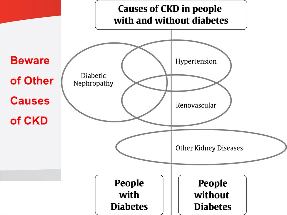 guidelines.diabetes.ca | BANTING ( ) | diabetes.ca Copyright © 2013 Canadian Diabetes Association Beware of Other Causes of CKD