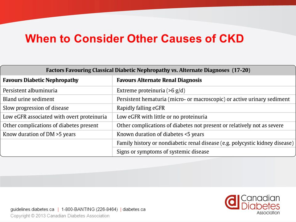 guidelines.diabetes.ca | BANTING ( ) | diabetes.ca Copyright © 2013 Canadian Diabetes Association When to Consider Other Causes of CKD