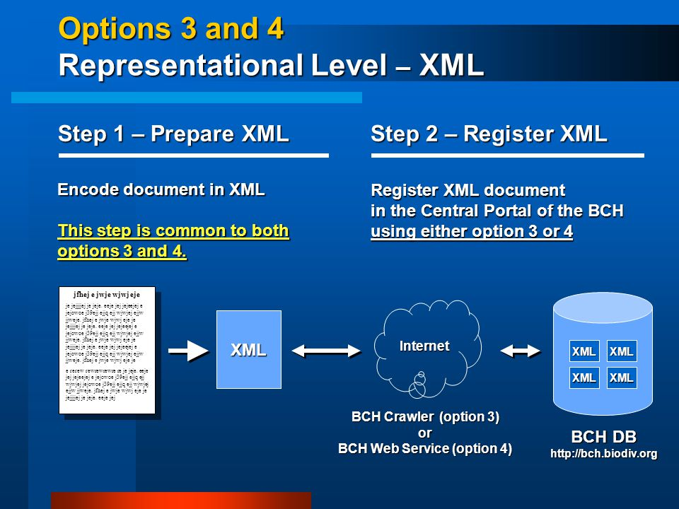 Options 3 and 4 Representational Level – XML XML jfhej e jwje wjwj eje je jejjjjej je jeje.