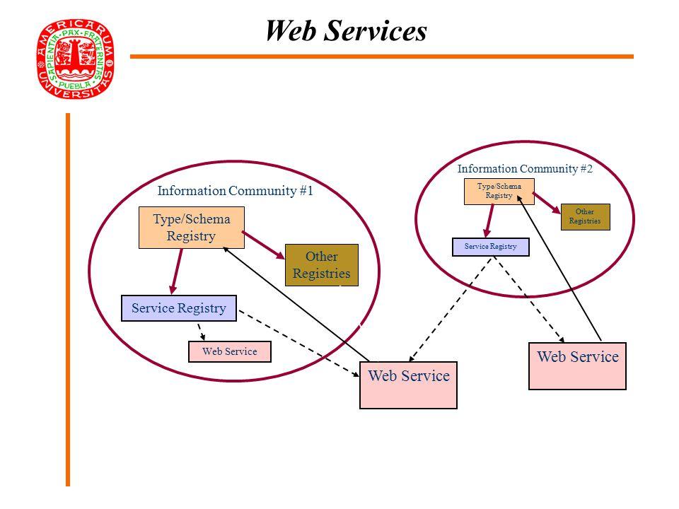 Type/Schema Registry Service Registry Other Registries Type/Schema Registry Service Registry Other Registries Web Service Information Community #1 Information Community #2 Web Service Web Services