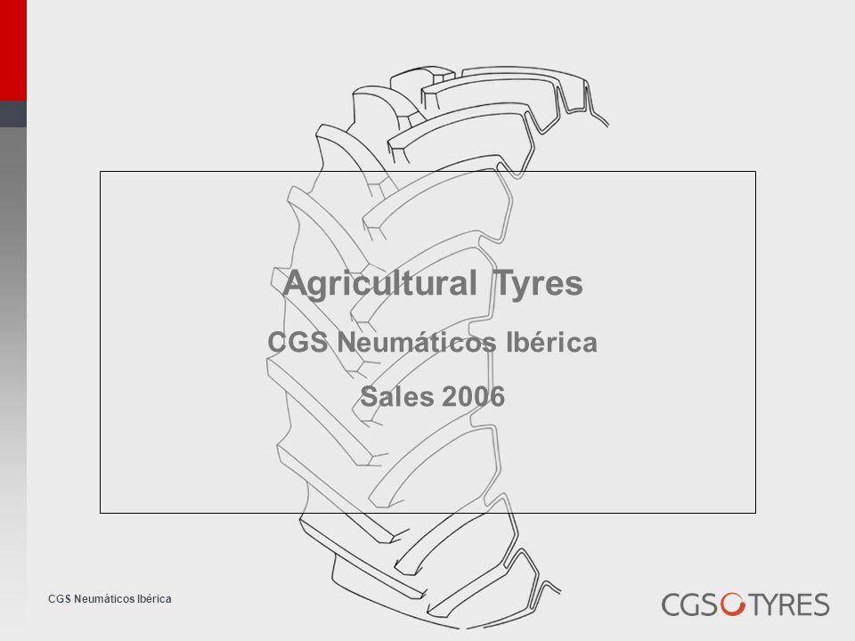 CGS Neumáticos Ibérica Price increases CGS Neumáticos Ibérica 2006Nov De cJuFebMarApr Ma yJunJulAgo Increas e Goodyear 5% 3,5% 8,67% Trelleborg 5% 5,00% Firestone 5% 2,5% 7,62% Michelin 0% Klever 0% Taurus 0% BFGoodrich 0% Stormil 0% Continental 6,5% 3,0%9,69% Semperit 3% 6,09% Barum 4% 3%7,12% Mitas 4% 3%7,12% BKT Alliance 3,5% 7,12%