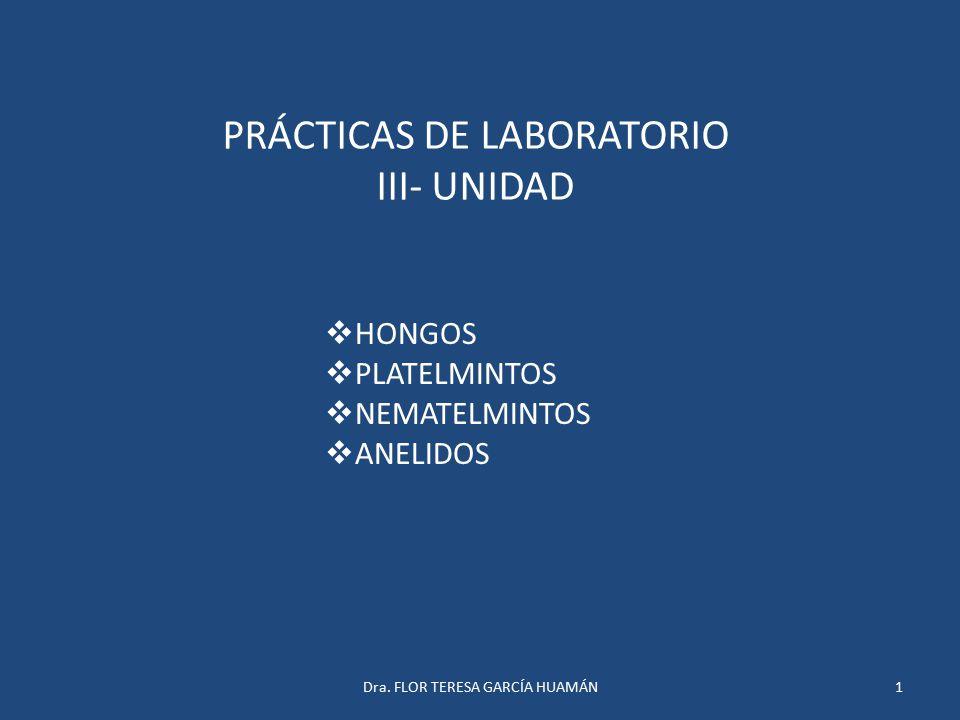 PRÁCTICAS DE LABORATORIO III- UNIDAD  HONGOS  PLATELMINTOS  NEMATELMINTOS  ANELIDOS 1Dra. FLOR TERESA GARCÍA HUAMÁN