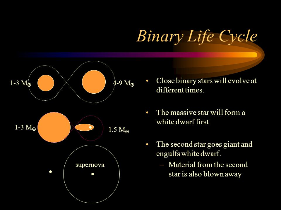 Binary Life Cycle Close binary stars will evolve at different times.