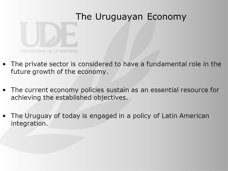 The Uruguayan Economy The private sector is considered to have a fundamental role in the future growth of the economy.