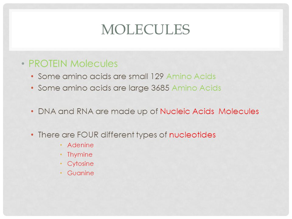 MOLECULES PROTEIN Molecules Some amino acids are small 129 Amino Acids Some amino acids are large 3685 Amino Acids DNA and RNA are made up of Nucleic Acids Molecules There are FOUR different types of nucleotides Adenine Thymine Cytosine Guanine