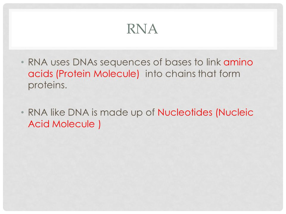 RNA RNA uses DNAs sequences of bases to link amino acids (Protein Molecule) into chains that form proteins.