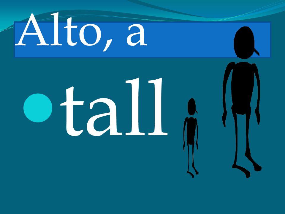 Alto, a tall