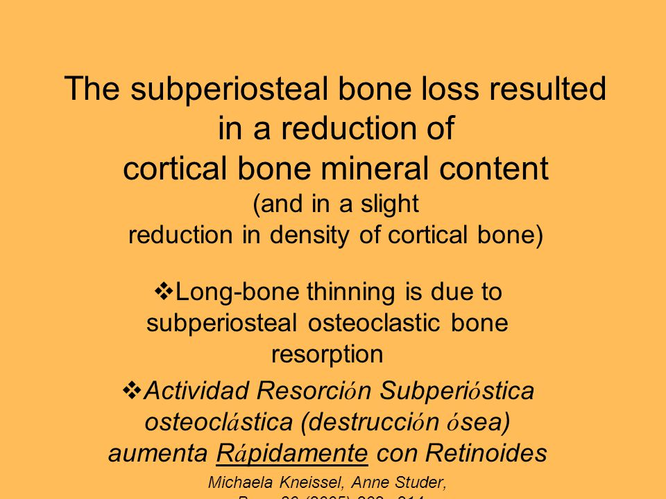 The subperiosteal bone loss resulted in a reduction of cortical bone mineral content (and in a slight reduction in density of cortical bone)  Long-bone thinning is due to subperiosteal osteoclastic bone resorption  Actividad Resorci ó n Subperi ó stica osteocl á stica (destrucci ó n ó sea) aumenta R á pidamente con Retinoides Michaela Kneissel, Anne Studer, Bone 36 (2005) 202 – 214