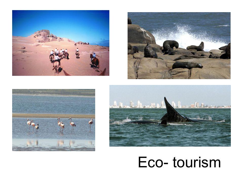Eco- tourism