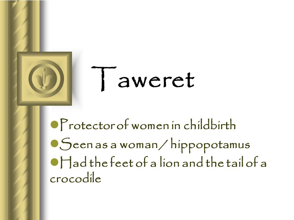 Taweret Protector of women in childbirth Seen as a woman / hippopotamus Had the feet of a lion and the tail of a crocodile