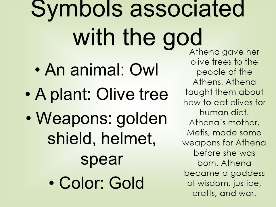 Symbols associated with the god An animal: Owl A plant: Olive tree Weapons: golden shield, helmet, spear Color: Gold Athena gave her olive trees to the people of the Athens.