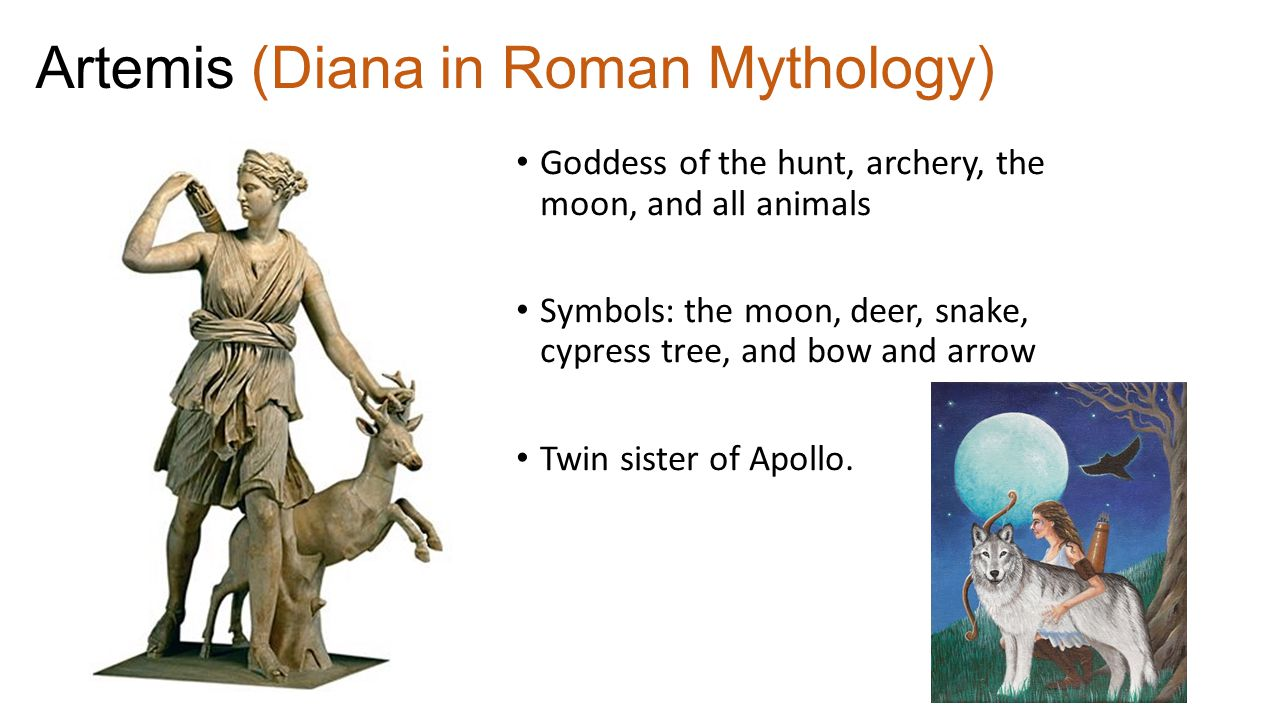 Greek mythology the olympians the olympians the 12 main gods of 12 artemis diana in roman mythology goddess of the hunt archery the moon and all animals symbols the moon deer snake cypress tree biocorpaavc Choice Image