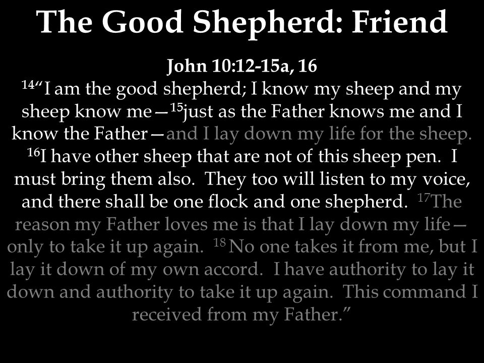 The Good Shepherd: Friend John 10:12-15a, I am the good shepherd; I know my sheep and my sheep know me— 15 just as the Father knows me and I know the Father—and I lay down my life for the sheep.