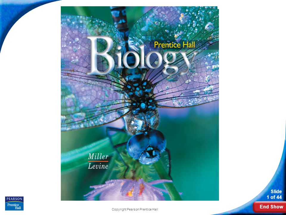 Pearson biology textbook pdf dolapgnetband pearson biology textbook pdf fandeluxe Images