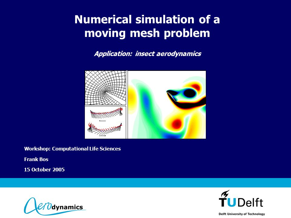 Vermelding onderdeel organisatie 15 October 2005 Numerical simulation of a moving mesh problem Application: insect aerodynamics Workshop: Computational Life Sciences Frank Bos