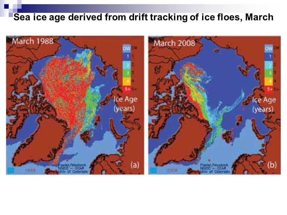 Sea ice age derived from drift tracking of ice floes, March