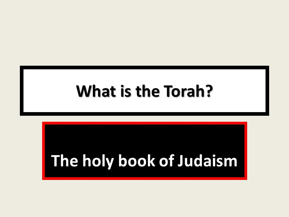 What is the Torah The holy book of Judaism