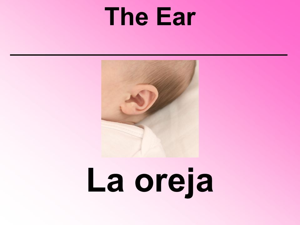 The Ear La oreja
