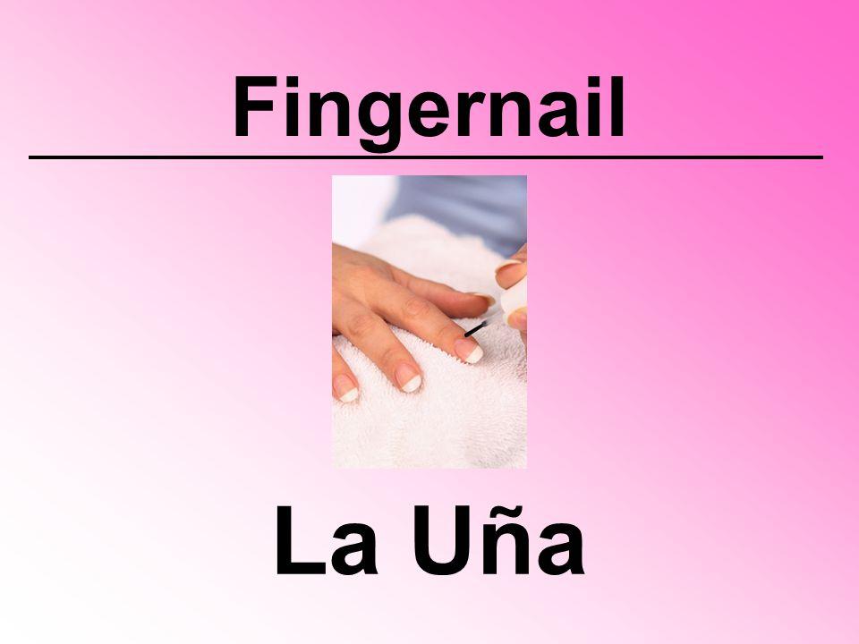 Fingernail La Uña