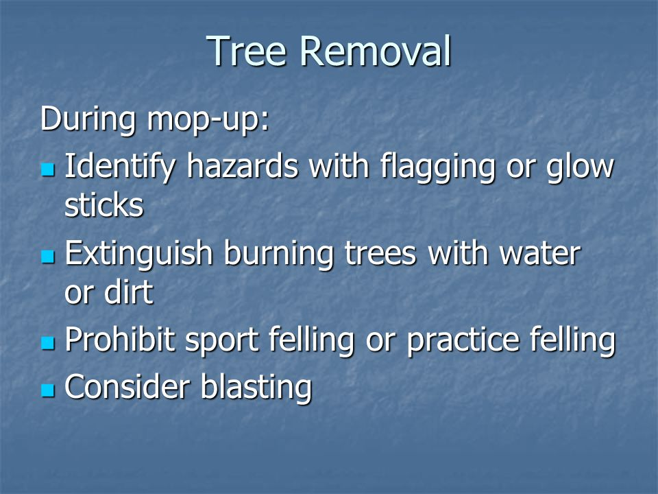 Tree Removal During mop-up: Identify hazards with flagging or glow sticks Identify hazards with flagging or glow sticks Extinguish burning trees with water or dirt Extinguish burning trees with water or dirt Prohibit sport felling or practice felling Prohibit sport felling or practice felling Consider blasting Consider blasting