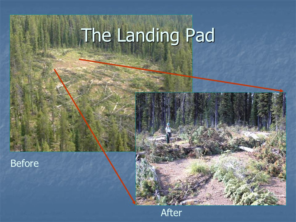 Before After The Landing Pad