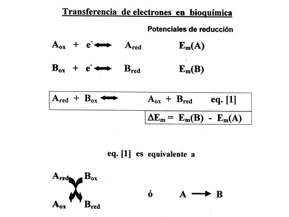 BIBLIOGRAFIA PLANT PHYSIOLOGY, 3rd.Ed., L.Taiz & E.Zieger Eds., Ch.7.