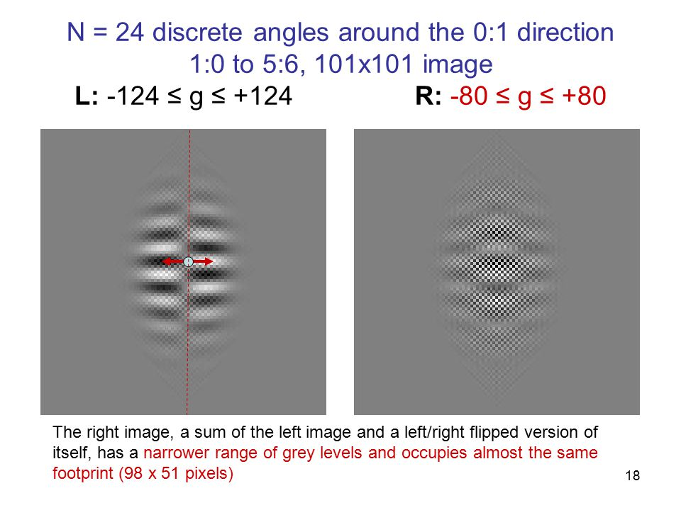 18 N = 24 discrete angles around the 0:1 direction 1:0 to 5:6, 101x101 image L: -124 ≤ g ≤ +124R: -80 ≤ g ≤ +80 The right image, a sum of the left image and a left/right flipped version of itself, has a narrower range of grey levels and occupies almost the same footprint (98 x 51 pixels)