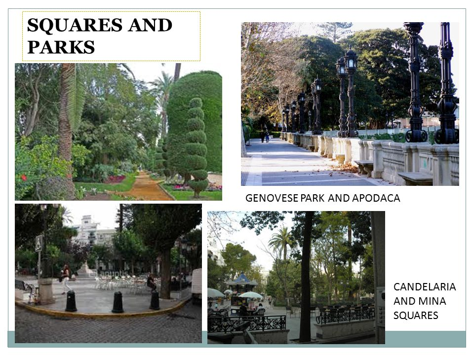 SQUARES AND PARKS GENOVESE PARK AND APODACA CANDELARIA AND MINA SQUARES