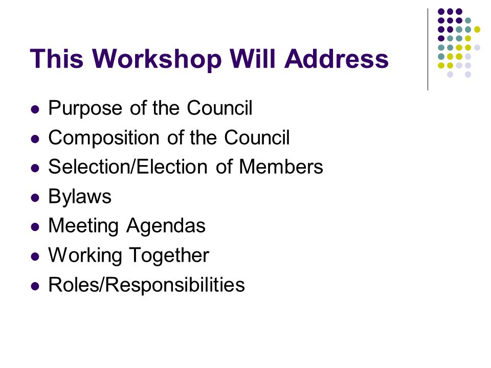 This Workshop Will Address Purpose of the Council Composition of the Council Selection/Election of Members Bylaws Meeting Agendas Working Together Roles/Responsibilities