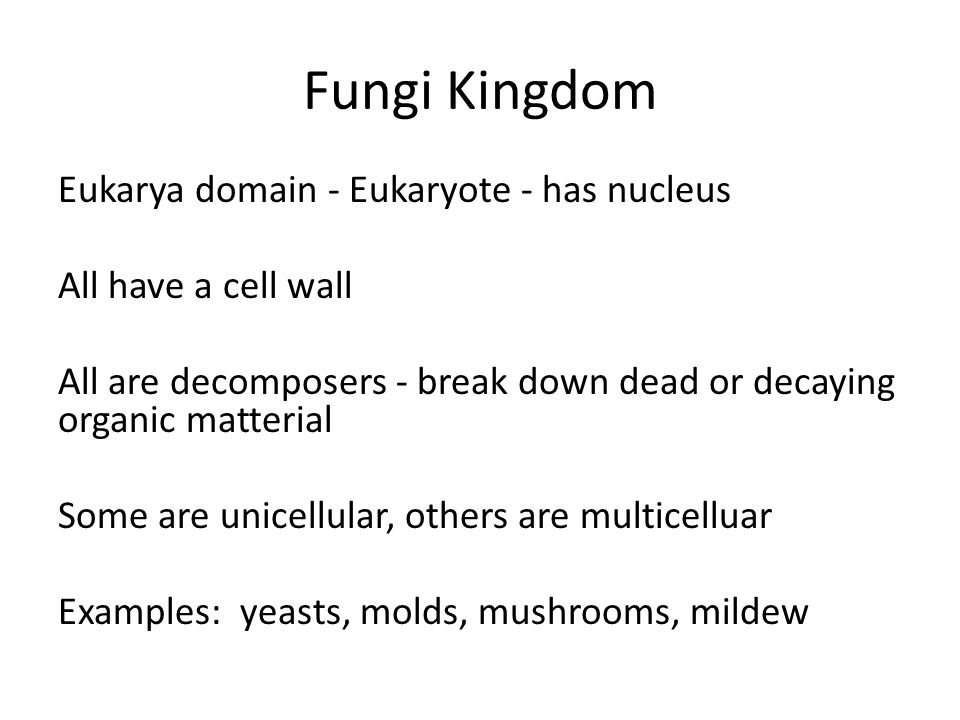 Fungi Kingdom Eukarya domain - Eukaryote - has nucleus All have a cell wall All are decomposers - break down dead or decaying organic matterial Some are unicellular, others are multicelluar Examples: yeasts, molds, mushrooms, mildew