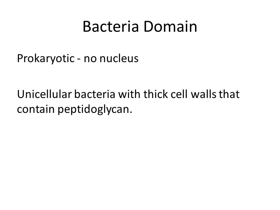 Bacteria Domain Prokaryotic - no nucleus Unicellular bacteria with thick cell walls that contain peptidoglycan.
