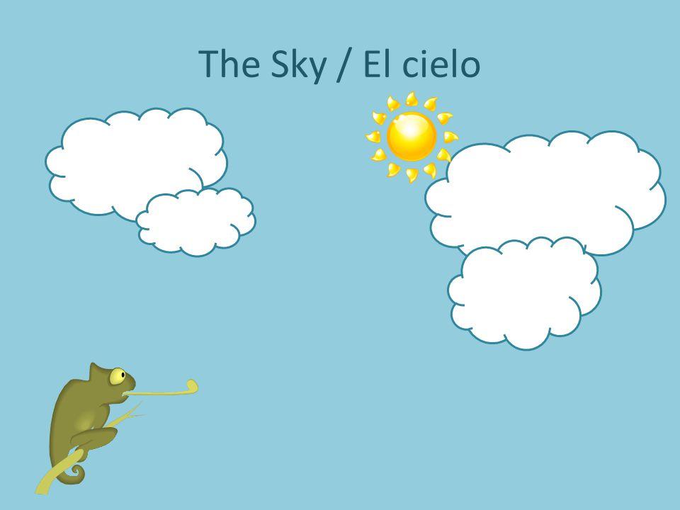 The Sun / El Sol Armarillo, Armarillo, Armarillo Yellow es.