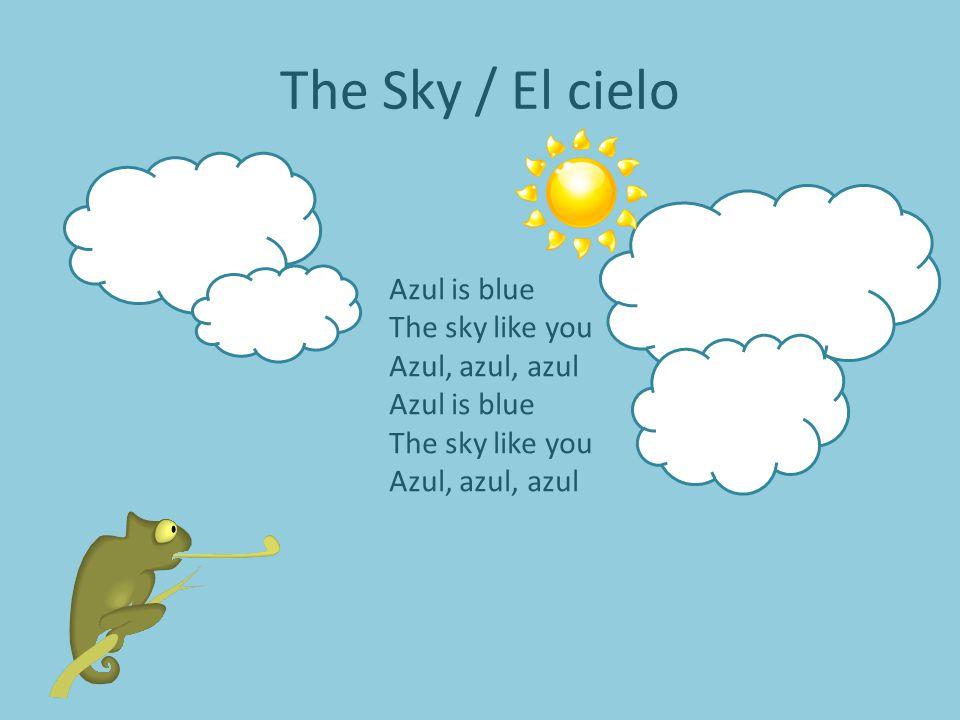 The Sky / El cielo