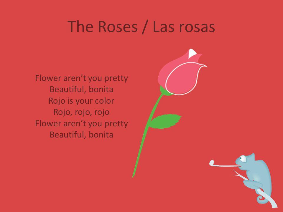 The Roses / Las rosas