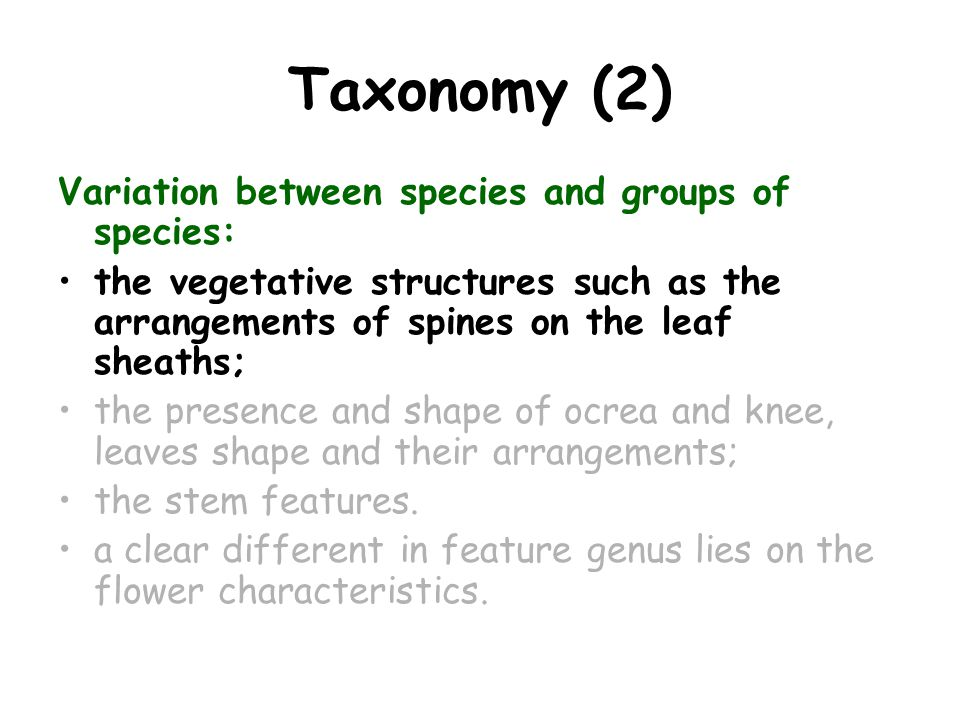 Taxonomy (2) Variation between species and groups of species: the vegetative structures such as the arrangements of spines on the leaf sheaths; the presence and shape of ocrea and knee, leaves shape and their arrangements; the stem features.