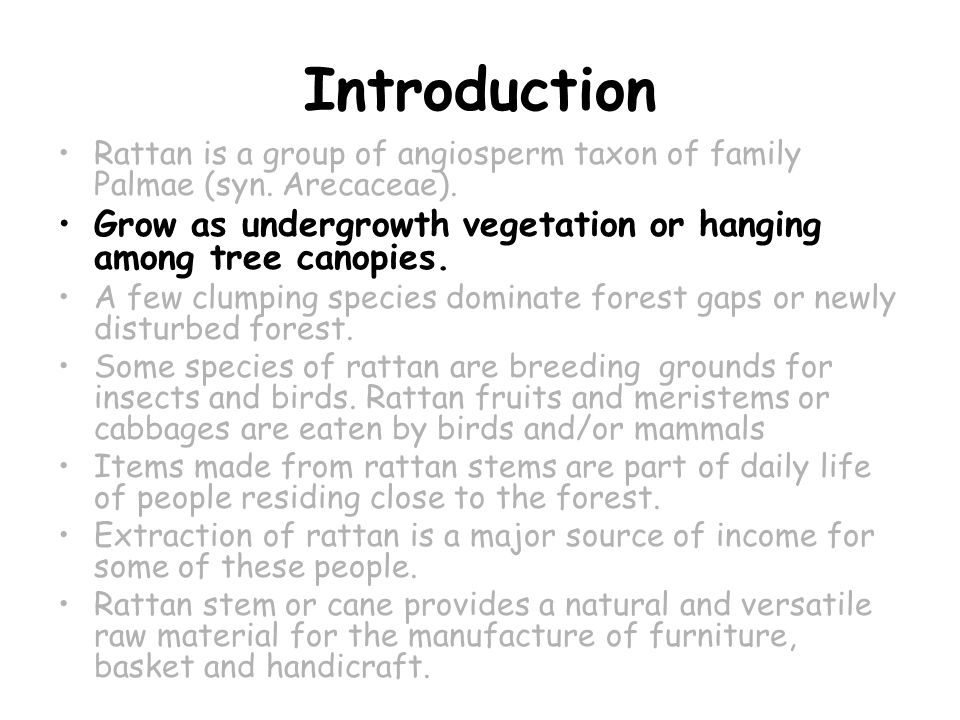 Introduction Rattan is a group of angiosperm taxon of family Palmae (syn.