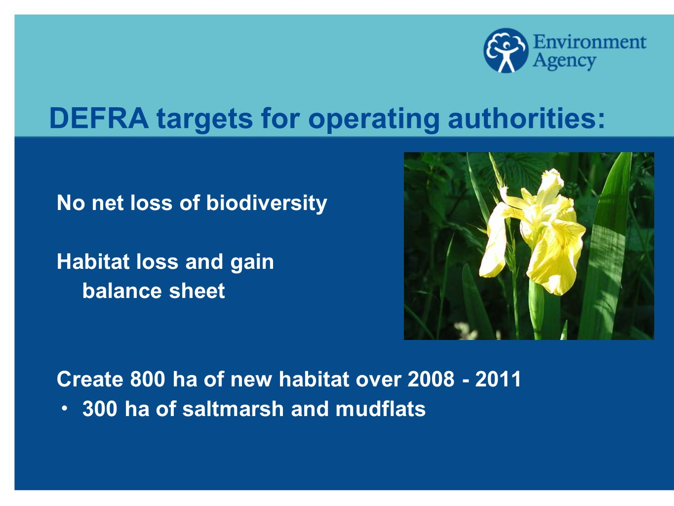 DEFRA targets for operating authorities: No net loss of biodiversity Habitat loss and gain balance sheet Create 800 ha of new habitat over  300 ha of saltmarsh and mudflats