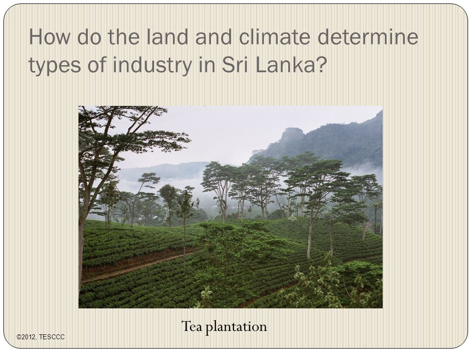 How do the land and climate determine types of industry in Sri Lanka Tea plantation ©2012, TESCCC