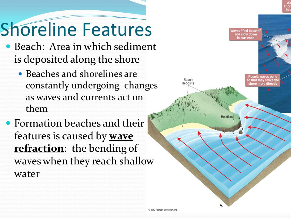 Shoreline Features Beach: Area in which sediment is deposited along the shore Beaches and shorelines are constantly undergoing changes as waves and currents act on them Formation beaches and their features is caused by wave refraction: the bending of waves when they reach shallow water