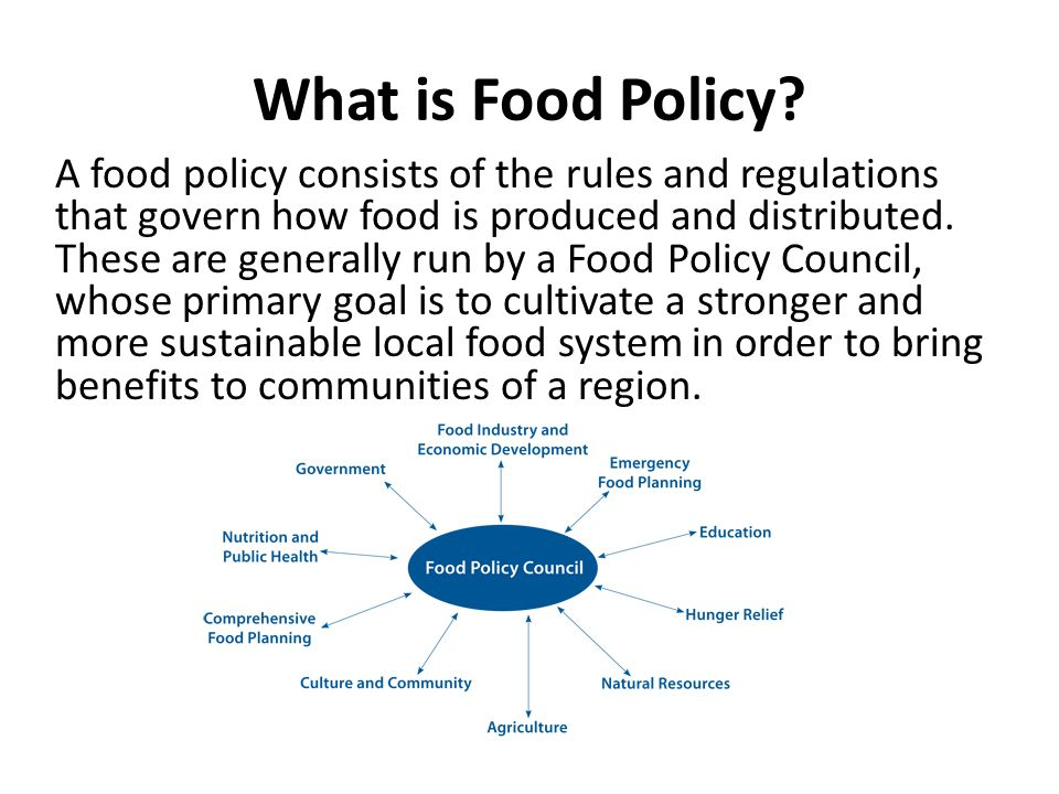 What is Food Policy.