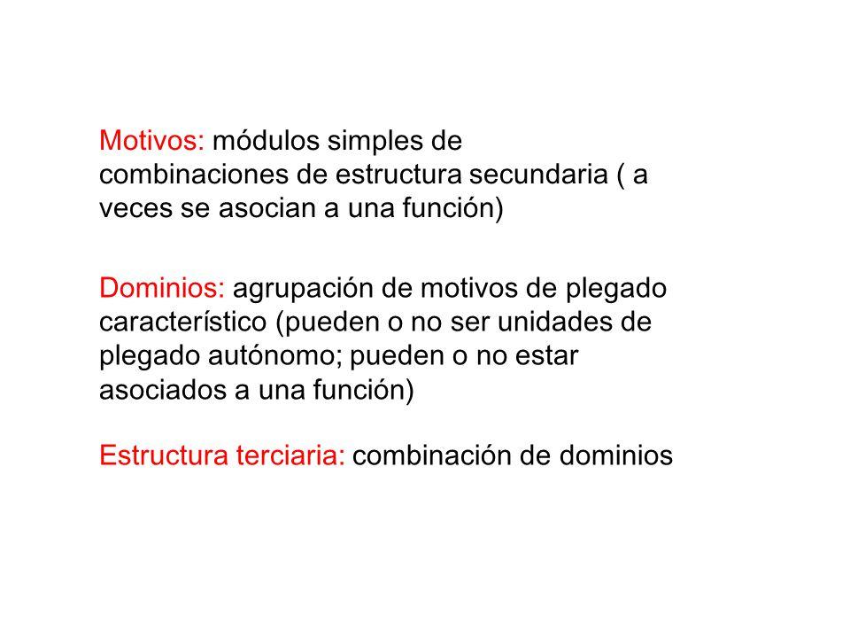 Motivos: módulos simples de combinaciones de estructura secundaria ( a veces se asocian a una función) Dominios: agrupación de motivos de plegado característico (pueden o no ser unidades de plegado autónomo; pueden o no estar asociados a una función) Estructura terciaria: combinación de dominios