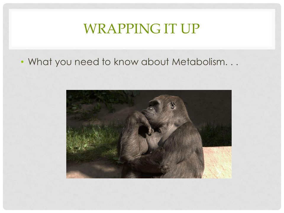 WRAPPING IT UP What you need to know about Metabolism...