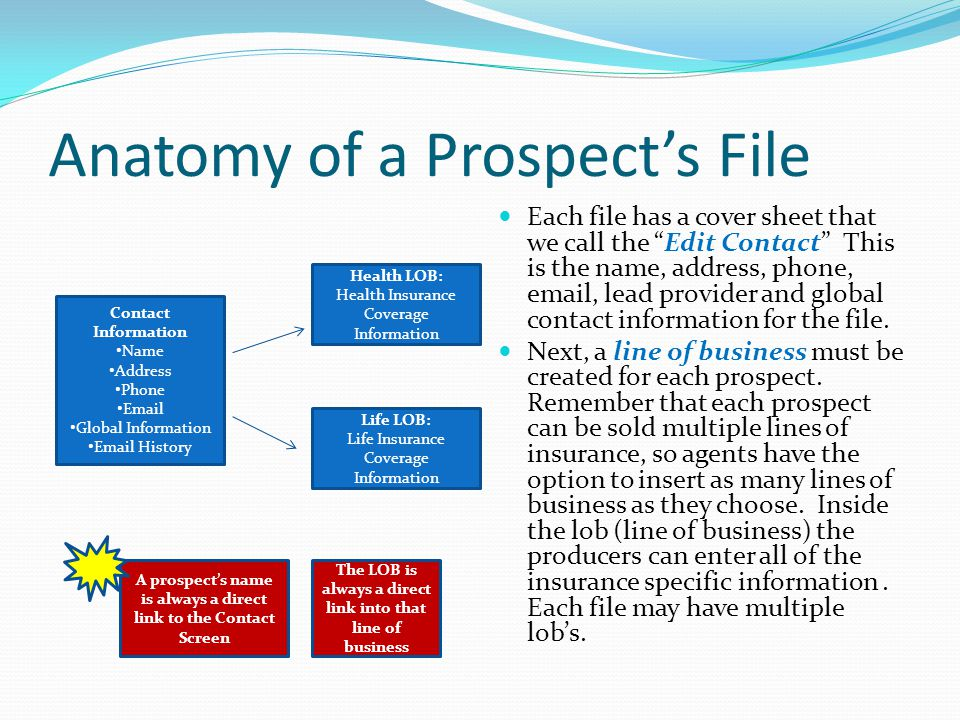 Anatomy of a Prospect's File Each file has a cover sheet that we call the Edit Contact This is the name, address, phone,  , lead provider and global contact information for the file.