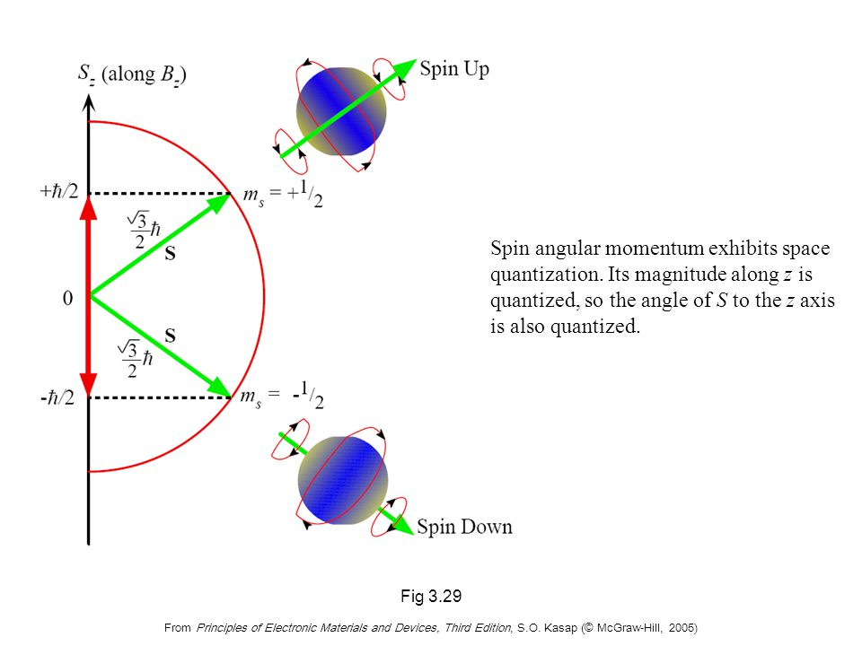 Fig 3.29 From Principles of Electronic Materials and Devices, Third Edition, S.O. Kasap (© McGraw-Hill, 2005) Spin angular momentum exhibits space qua